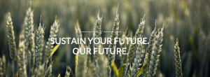 Sustain Your Future
